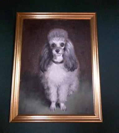 vintage poodle portrait