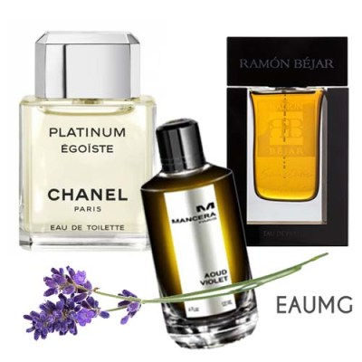 colognes for summer