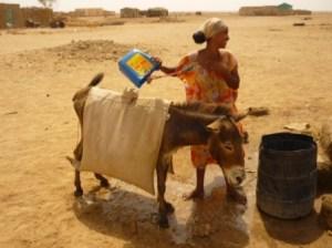 Puits Erythrée