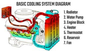 Cooling System & Radiator Servicing & Repairs | Everything Automotive Cairns