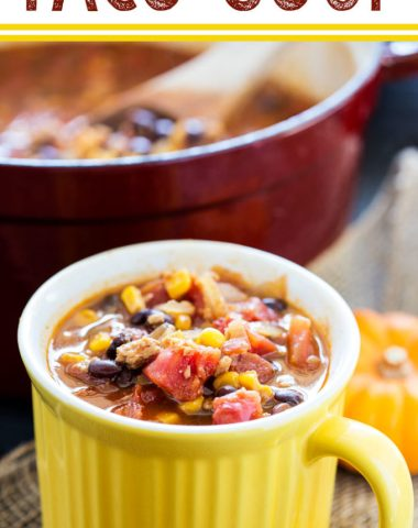 A comforting fall soup, Vegan Taco Soup is great for meatless monday or any day.