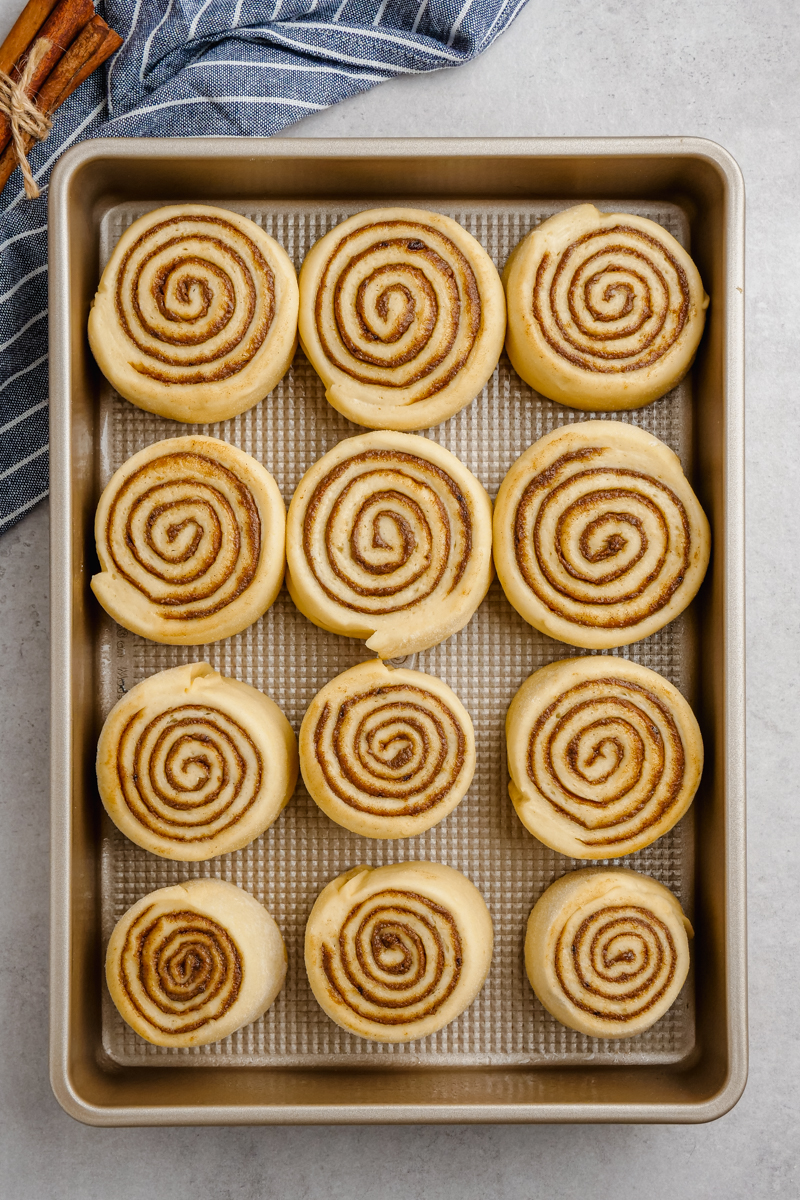Cinnamon rolls on a baking tray, before you bake them.