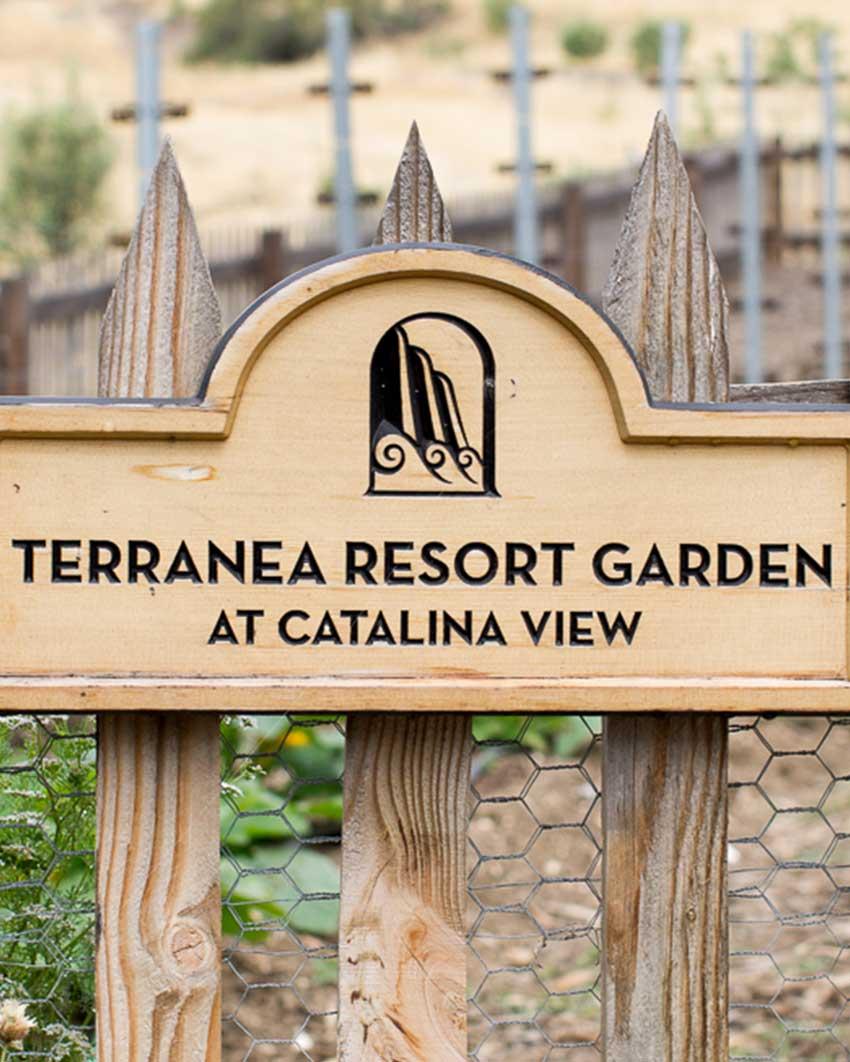 resort-garden