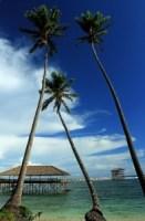 Cloud Nine Boardwalk