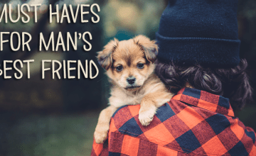 Delightful Dog Gifts Any Furry Friend Will Love
