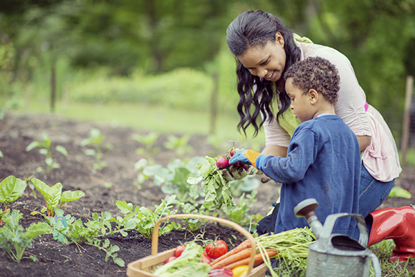 A mother and her son are kneeling next to their vegetabel garden and are holding their freshly picked produce, next to them is a basket full of vegetables and a watering can.