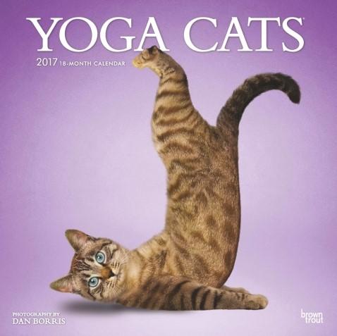 Yoga cats calendar