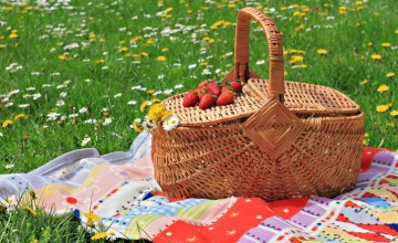 How to Plan the Best Summer Picnic without Breaking the Bank