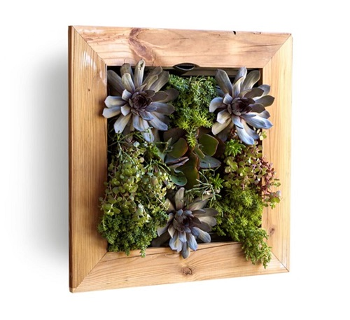 Reclaimed Wood Living Wall