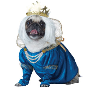 California Costumes Queen of Bones Dog Costume