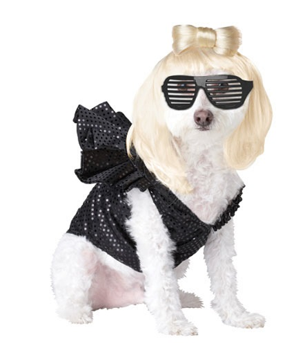Lady Dogga Dog Animal Planet Pet Halloween Costume