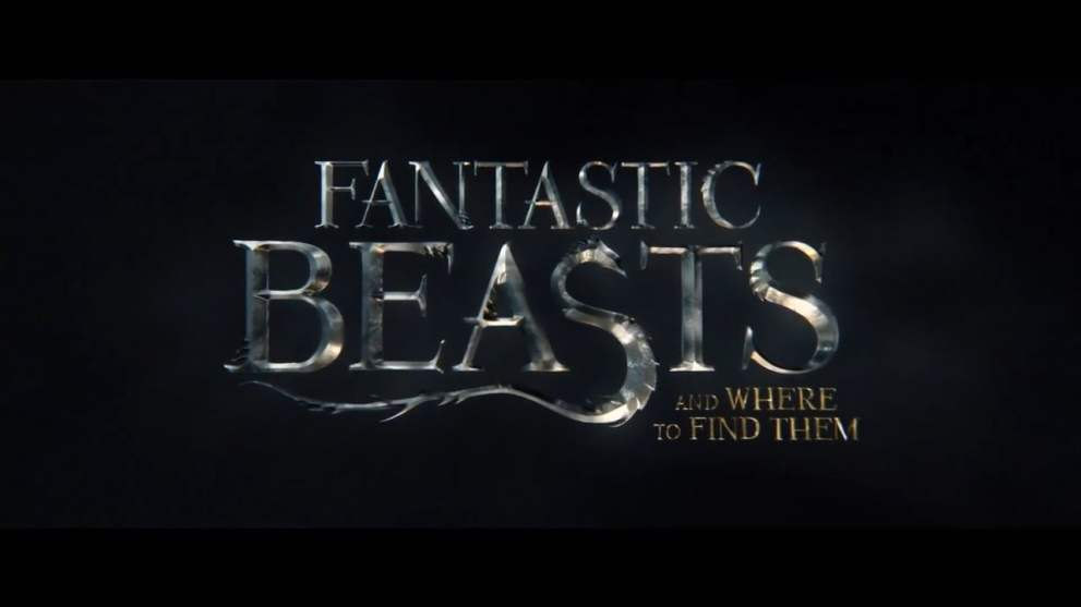 3 Easy DIY Fantastic Beasts Costumes For Opening Night