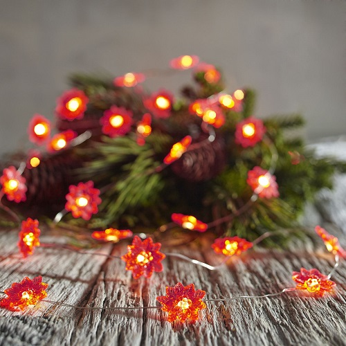 Red Poinsettia 10' LED Glimmer Strings