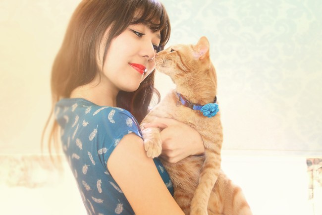 6 Fashionable Pet Accessories Dog and Cat Owners Will Obsess Over 2