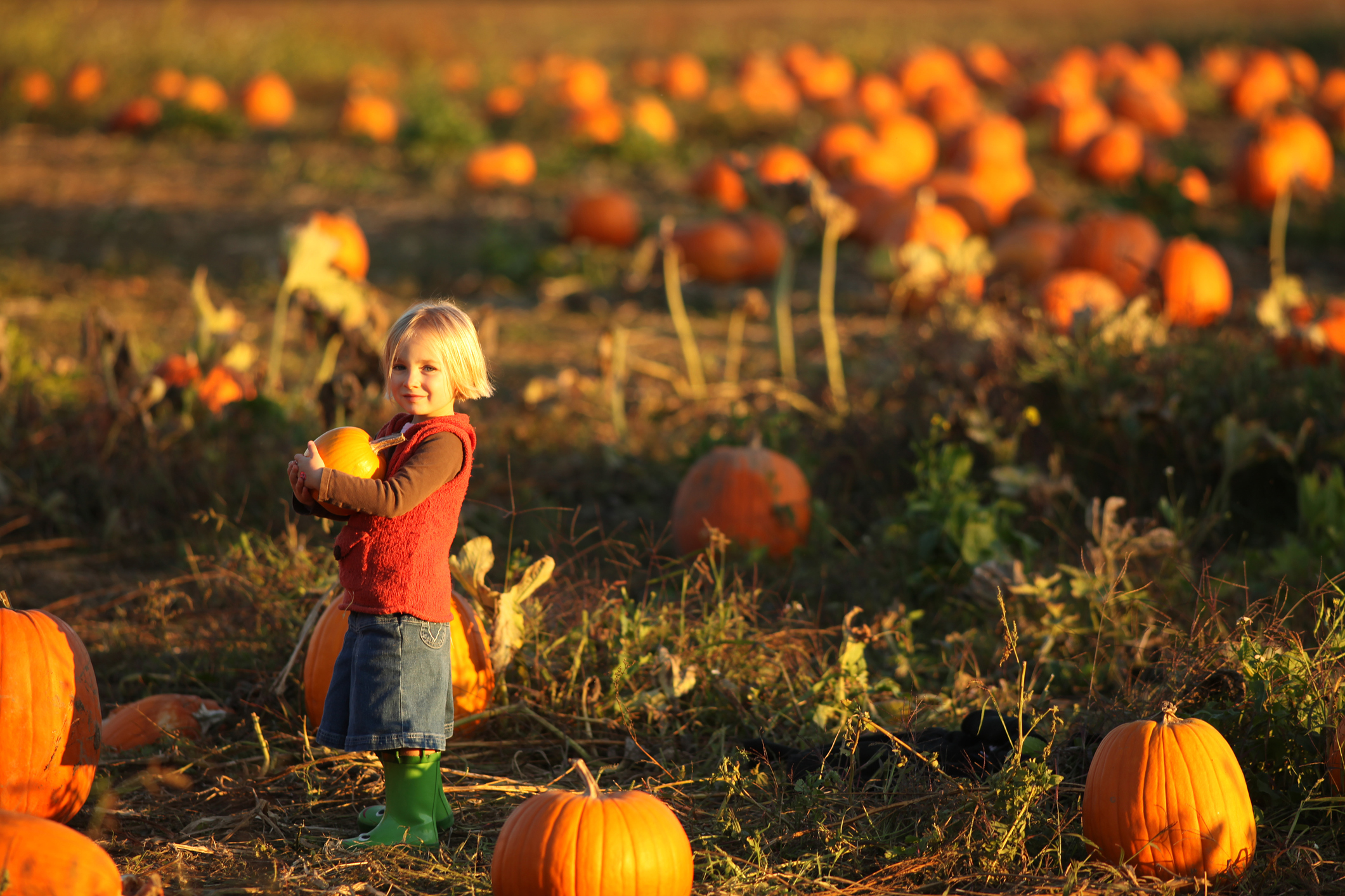 Insta-Worthy Autumn Activities Your Family and Followers Will Love