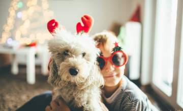 9 Wag-Worthy Gifts for Your Furry Best Friend