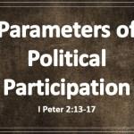 Parameters of Political Participation