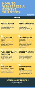 How to Winterize a Beehive in 8 Steps