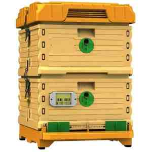Apimaye 10 Frame Langstroth Plastic Beehive Nuc