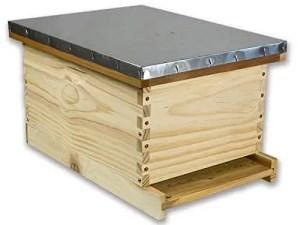 Arboria 8-Frame Deep Pine Beehive Starter Kit