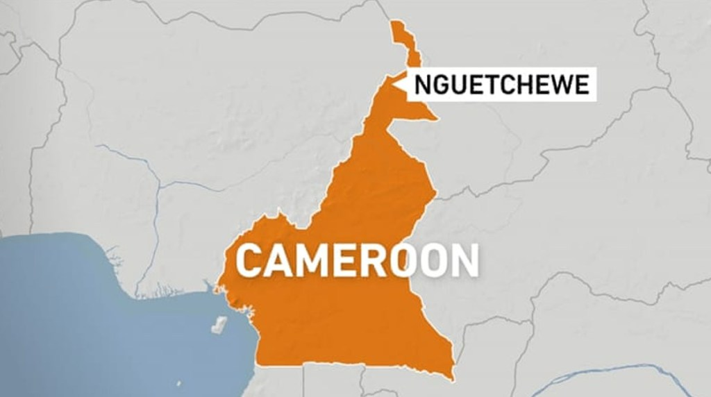 The unidentified assailants threw a grenade inside Cameroon camp for displaced people kills 16