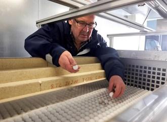 Siemens consigue almacenar energía en piedras y reutilizarla como electricidad