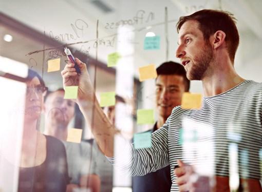 Falta capacitación acerca de la diversidad dentro de las organizaciones