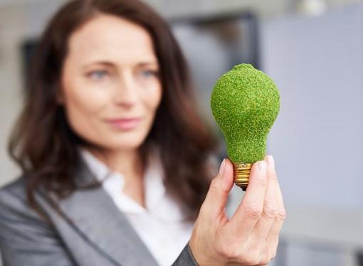 La contribución de las soluciones informáticas para lograr objetivos medioambientales