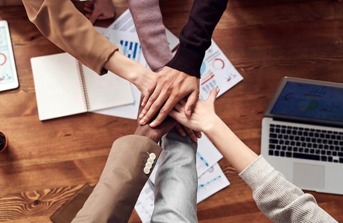 Diseño, estrategias de marketing y reclutamiento online