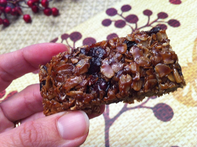Allergy Friendly Granola Bars - DF EF NF WF