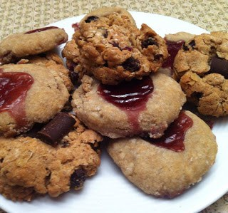 Allergy Free Freezer Cookies