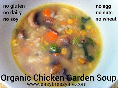 Chicken Soup - Allergy Free, dairyfree, soyfree, eggfree, nutfree, wheatfree, top8free