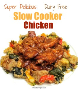 Easy Slow Cooker Chicken recipes that are dairy free!