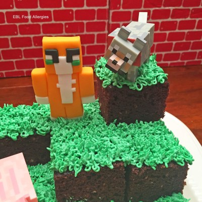 Stampy Minecraft Birthday Cake