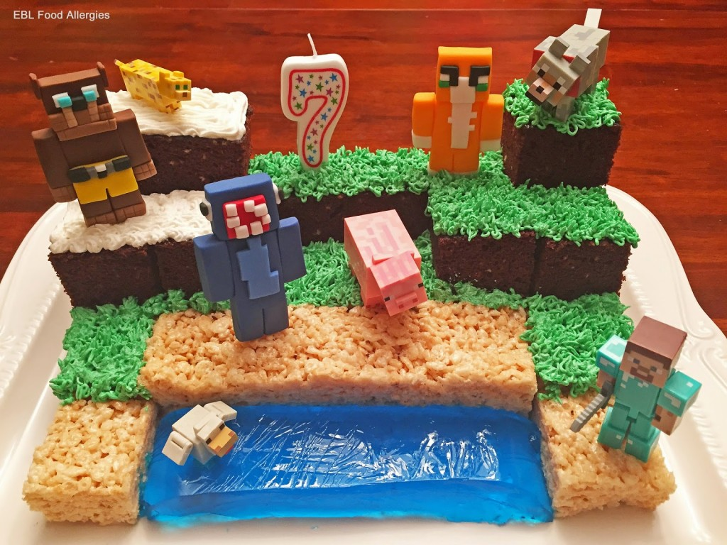 Minecraft Birthday Cake Ebl Food Allergies
