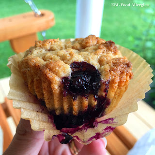 Easy Allergy-Friendly Blueberry Muffin Recipe
