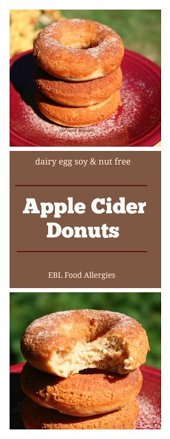 Vegan Apple Cider Donut Recipe