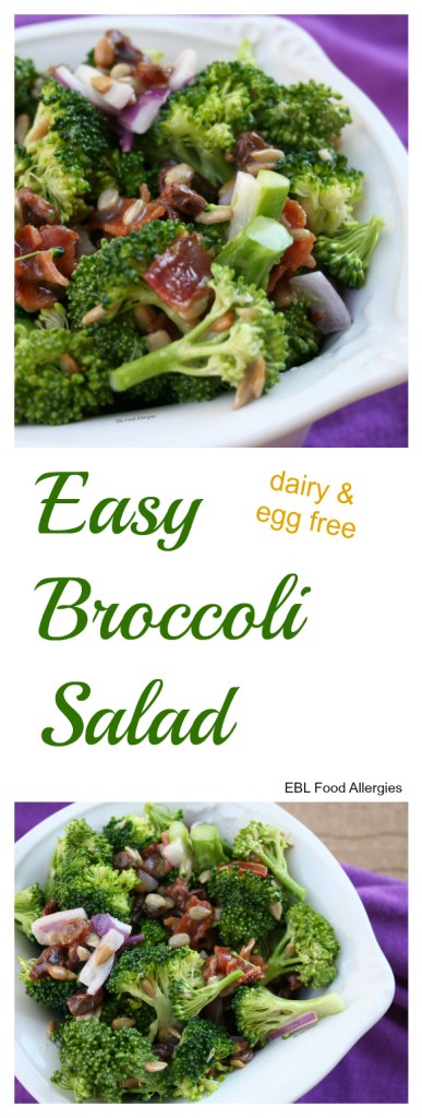 The BEST dairy & egg free broccoli salad recipe! Perfect for holidays, picnics and side dishes.