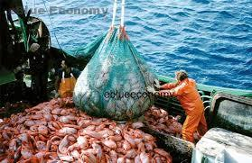 eBlue_economy_fishing3
