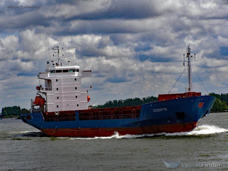 eBlueCargo ship went NUC, blocked canal, damaged leisure boats, Danube_economy_