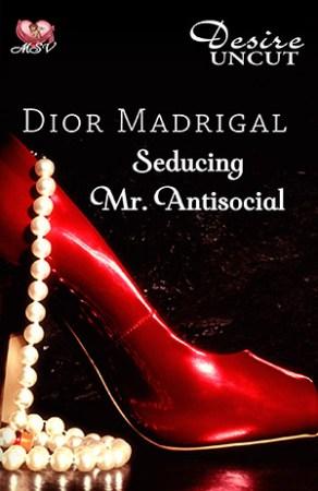 13607-Seducing-Mr-Antisocial