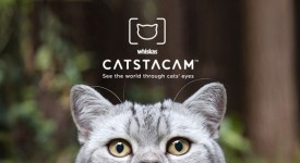 whiskas-castacam-collier-chat-instagram-eboow