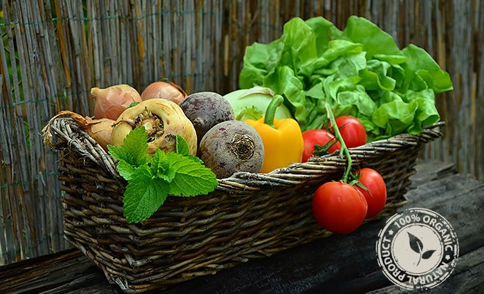 Terra de Burgans hamper of organic fruit and vegetables