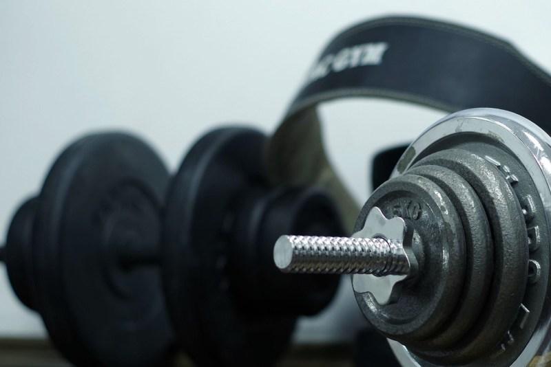ebtofficial lifting belts