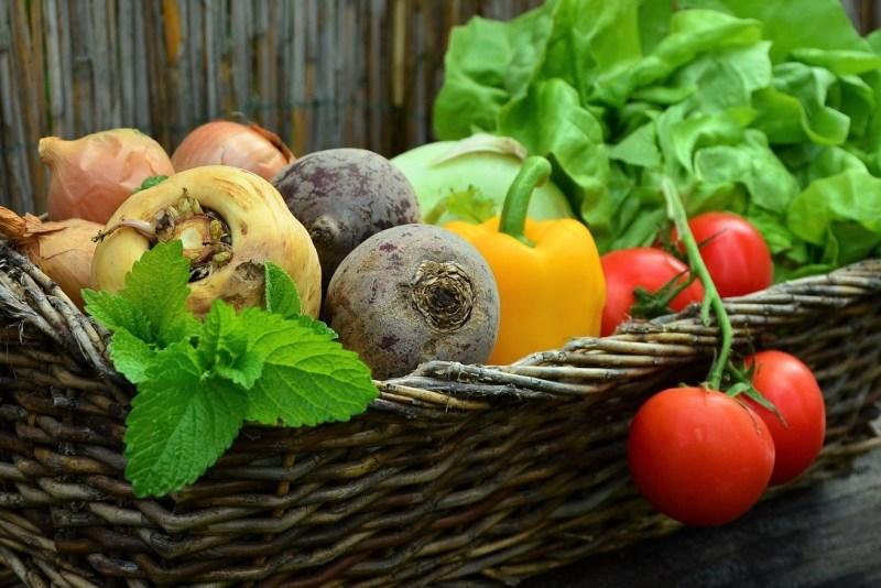 ebtofficial diet exercise ebt