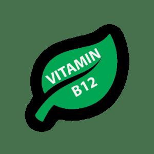 VITAMIN B12 EVIDENCE BASED TRAINING