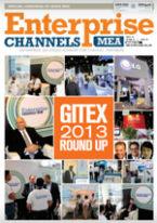 Gitex-2013-Round-Up