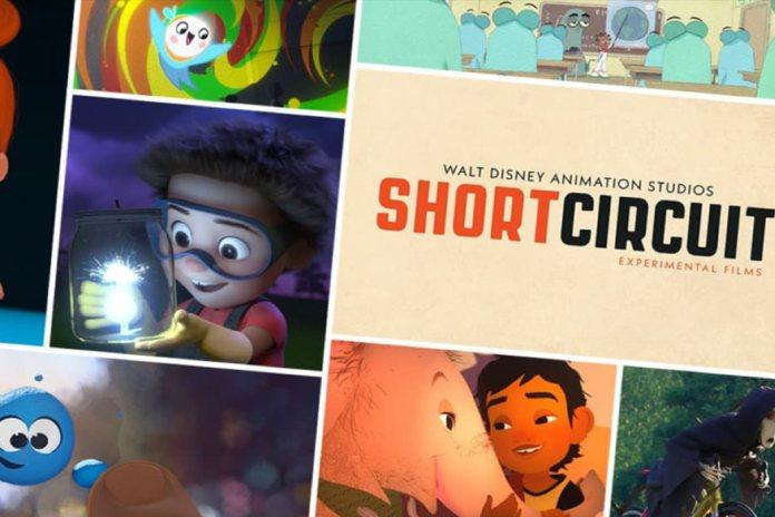 'Circuit shorts'