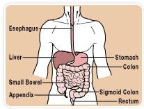 Esophageal Dilatation – ECAA
