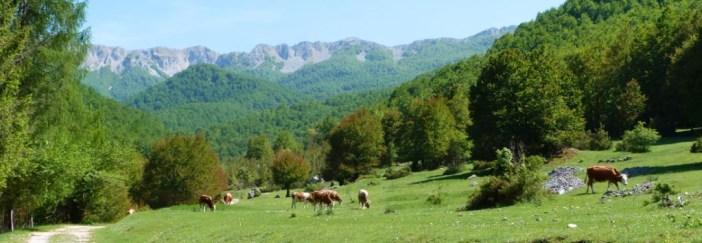 parco nazionale